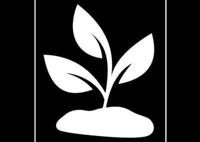 Illustration Pflanze als Zeichen für Nachhaltigkeit